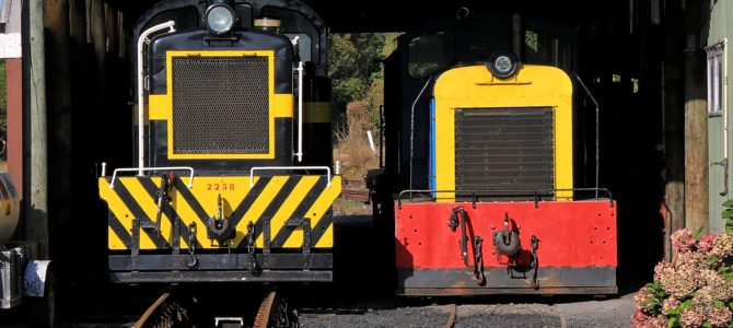 Trains cancelled from Saturday 9th October until level returns to 2